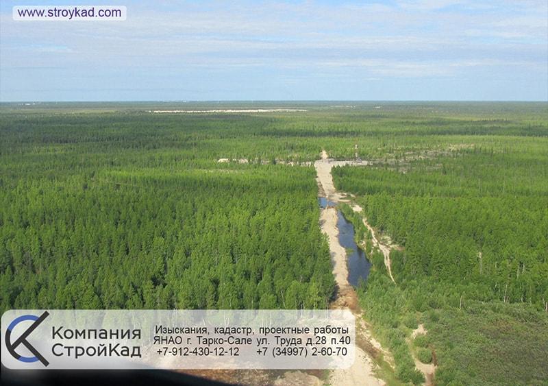 Кадастровые работы на землях лесного фонда
